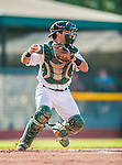 1 September 2013: Vermont Lake Monsters catcher Josh Miller in action against the Connecticut Tigers at Centennial Field in Burlington, Vermont. The Lake Monsters fell to the Tigers 6-4 in 10 innings of NY Penn League action. Mandatory Credit: Ed Wolfstein Photo *** RAW Image File Available ****