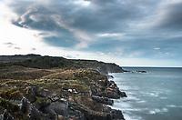 Moody dawn on wild and remote coastline near Charleston near Westport, Buller region, West Coast, New Zealand, NZ