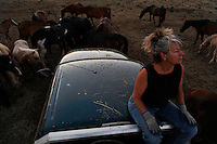 Dianne Nelson has saved mustangs on a ranch in northern California.  &quot;It was in 1978 that the Wild Horse Sanctuary founders rounded up almost 300 wild horses for the Forest Service in Modoc County, California. Of those 300, 80 were found to be un-adoptable and were scheduled to be destroyed at a government holding facility near Tule Lake, California. <br /> <br /> The Sanctuary is located near Shingletown, California on 5,000 acres of lush lava rock-strewn mountain meadow and forest land. Black Butte is to the west and towering Mt. Lassen is to the east. <br /> Their goals:<br /> Increase public awareness of the genetic, biological, and social value of America's wild horses through pack trips on the sanctuary, publications, mass media, and public outreach programs.<br /> Continue to develop a working, replicable model for the proper and responsible management of wild horses in their natural habitat.<br /> Demonstrate that wild horses can co-exist on the open range in ecological balance with many diverse species of wildlife, including black bear, bobcat, mountain lion, wild turkeys, badger, and gray fox.<br /> Collaborate with research projects in order to document the intricate and unique social structure, biology, reversible fertility control, and native intelligence of the wild horse.
