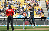 20.02.2015. Wellington, New Zealand.  Tim Southee appeals to the umpire during the ICC Cricket World Cup match between New Zealand and England at Wellington Regional Stadium, New Zealand.