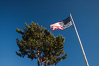 Standing next to a green tree, the U.S. flag waves in the afternoon breeze on the weekend leading up to July 4, 2016.