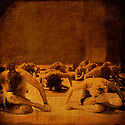 People in a seated yoga posture in a group class.