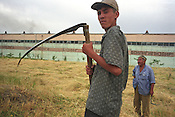In the countryside of the Ferghana valley men work the land beside an industrial factory. Ferghana valley is famous for being the most fertile area in the region, and was an important re-fueling and resting place on  the Old Silk Road trading route. Uzbekistan