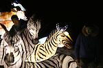 Foto: VidiPhoto <br /> <br /> ARNHEM - Chinese technici inspecteren vrijdagmorgen in alle vroegte voor de laatste keer de verlichte ornamenten in Burgers' Zoo. Zaterdagavond start in de Arnhemse dierentuin een voor Nederland uniek lichtspektakel. Tot 1 maart is dan voor bezoekers het evenement China Light te bekijken. Burgers' Zoo blijft dan tot 's avonds 21.00 uur geopend. Topattractie is de 40 meter lange en 6 meter hoge Chinese draak. Door het hele park staan ruim 100 lichtfiguren, die samengesteld zijn uit een paar duizend ornamenten. Om het lichtevenement tot stand te brengen zijn tien Chinese technici enkele weken bezig geweest met de opbouw daarvan. Vijf van hen blijven in het park aanwezig om spoedreparaties uit te voeren als er storingen ontstaan.