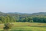 A pasture in Quechee village, Hartford, VT, USA