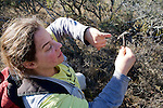 Estela Luengos Vidal Taking Sample of Dung