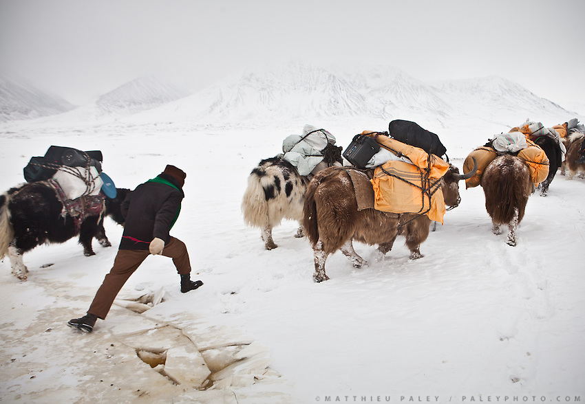 A spot with ice crevasses..A Kyrgyz caravan on its way to the lower valley, between the camps of Ech Keli and Burgut Yor...Trekking with yak caravan through the Little Pamir where the Afghan Kyrgyz community live all year, on the borders of China, Tajikistan and Pakistan.