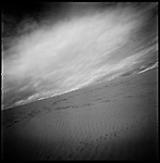 Sand Dune, North Devon, 2011
