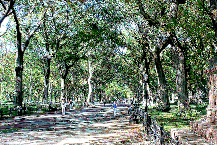 Going for a relaxing walk in Central Park away from the hustle and bustle of the city.