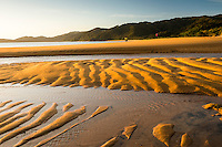 Tourists photographing sunrise on golden beach in Totaranui with sand patterns after high tide, Abel Tasman National Park, Nelson Region, New Zealand
