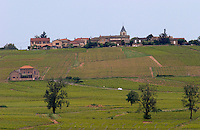 vineyard hilltop village beaujolais burgundy france