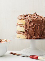 Basic White Cake with Milk Chocolate Frosting
