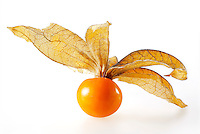 Fresh cape gooseberry against white background
