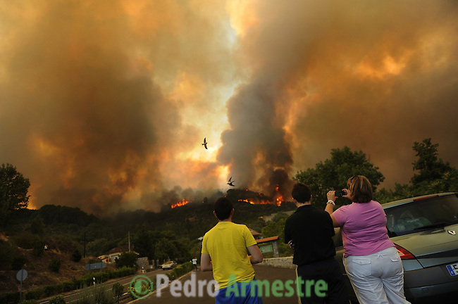 "SPAIN, Mombeltran : People view flames and heavy smoke engulfing the forest in Mombeltran near Avila, on July 28, 2009. With temperatures forecast to hit 40 degrees Celsius (104 degrees Fahrenheit) in many parts of Spain on Tuesday, the interior ministry maintained three-quarters of Spain on ""maximum"" alert for wildfires.on July 28, 2009. (C) Pedro ARMESTRE"
