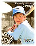 2011 Burlington American Wings