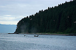 Alaska..Humpback whales and scenery at Point Adolphus..Cruise on Spirit of Discovery..Photo copyright Lee Foster, 510/549-2202, lee@fostertravel.com, www.fostertravel.com..