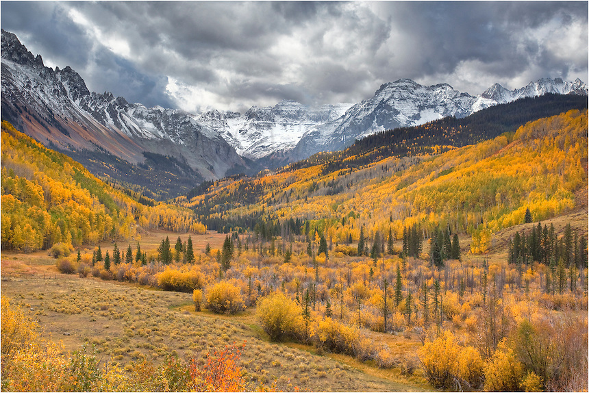 Each autumn, the aspen leaves put on a show with their turning from green to gold. This image from Colorado and the San Juan Mountains was taken in the fall. The colors were amazing!