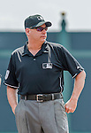 19 March 2015: MLB Umpire Andy Fletcher stands ready to start a Spring Training game between the Miami Marlins and the Atlanta Braves at Champion Stadium in the ESPN Wide World of Sports Complex in Kissimmee, Florida. The Braves defeated the Marlins 6-3 in Grapefruit League play. Mandatory Credit: Ed Wolfstein Photo *** RAW (NEF) Image File Available ***
