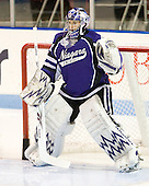Andrew Hare (Niagara - 31) - The visiting Niagara University Purple Eagles defeated the Northeastern University Huskies 4-1 on Friday, November 5, 2010, at Matthews Arena in Boston, Massachusetts.