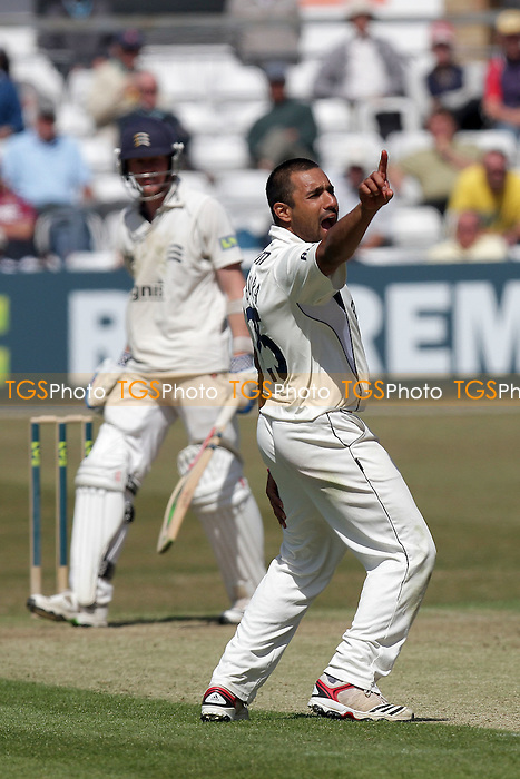 Ravi Bopara of Essex appeals for the wicket of Middlesex batsman Sam Robson - Essex CCC vs Middlesex CCC - LV County Championship Division Two cricket at the Ford County Ground, Chelmsford - 24/05/11 - MANDATORY CREDIT: Gavin Ellis/TGSPHOTO - Self billing applies where appropriate - Tel: 0845 094 6026