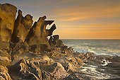 Salt Point State Park has many unusual Tafoni Sandstone rock formations like this one, California, USA.