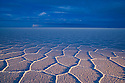 Bolivia, Altiplano, Salar de Uyuni, world's largest salt pan; detail; hexagons evolve a few months after salt pan has dried up; at dusk, foreground lit with truck lights