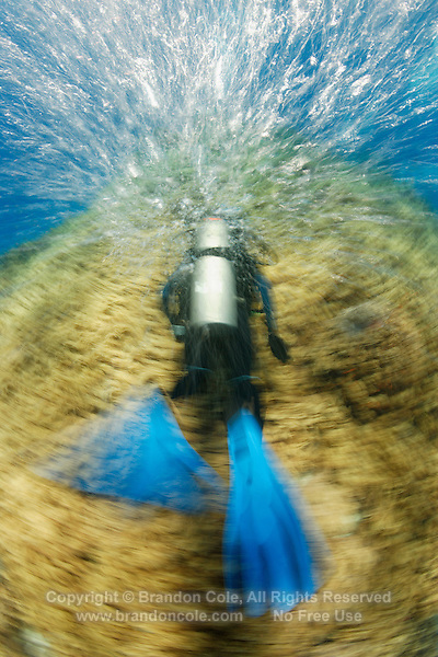 "qe0533-D. scuba diver (model released) swims into strong current over field of Leather Coral (Sinularia flexibilis) at a dive site called ""Kansas"". Long exposure yields motion-blur for effect. Fiji, tropical Pacific Ocean. .Photo Copyright © Brandon Cole. All rights reserved worldwide.  www.brandoncole.com..This photo is NOT free. It is NOT in the public domain. This photo is a Copyrighted Work, registered with the US Copyright Office. .Rights to reproduction of photograph granted only upon payment in full of agreed upon licensing fee. Any use of this photo prior to such payment is an infringement of copyright and punishable by fines up to  $150,000 USD...Brandon Cole.MARINE PHOTOGRAPHY.http://www.brandoncole.com.email: brandoncole@msn.com.4917 N. Boeing Rd..Spokane Valley, WA  99206  USA.tel: 509-535-3489"