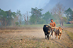 A farmer plows his field near the village of Buttar in the Gorkha District of Nepal.