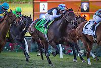 12-04-16 Matriarch Stakes