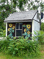 Painted garden shed with sunflowers and birdbox in community garden, Yarmouth Maine