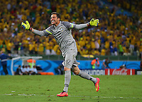 Brazil goalkeeper Julio Cesar celebrates their second goal scored by David Luiz