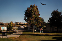 Arroyo Gande,  California, November 1, 2011 - Luxury homes sit in the hilltops above Arroyo Grande High School where well-heeled students study alongside working-class students. As a part of an effort to help bridge some of the contrasts in school performance here, the 10,800-student school district of Lucia Mar recently became the first in California to adopt, in four of its schools, the Teacher Advancement Program (TAP) school-reform initiative. The complex model couples professional development, teacher observations keyed to a set of teaching standards and  leadership opportunities for teachers. .