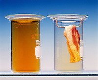 BROMINATION OF BACON FAT<br /> (Variations Available)<br /> Unsaturated Bacon Fat Reacts With Bromine Vapor<br /> The bromine vapor disappears.  The jar without the bacon is for comparison.