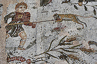 Detail of a mosaic of a boy playing with a monkey in the Villa of the Aviary, Carthage, Tunisia, pictured on January 30, 2008, in the morning. Carthage was founded in 814 BC by the Phoenicians who fought three Punic Wars against the Romans over this immensely important Mediterranean harbour. The Romans finally conquered the city in 146 BC. Subsequently it was conquered by the Vandals and the Byzantine Empire. Today the site s a UNESCO World Heritage. The Roman Villa of the Aviary, with its octagonal garden set in a peristyle courtyard, is known for its fine mosaics depicting birds. Picture by Manuel Cohen.