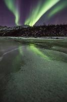 The aurora borealis lights the nights sky in Alaska's Brooks range, arctic, Alaska