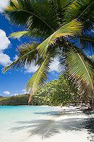 Big Maho Bay Beach.Maho Bay, St John.Virgin Islands National Park