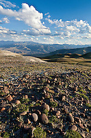 View from Carter Mountain in the Shoshone National Forest Wyoming