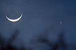 The crescent moon and the planet Venus buddy up together on February 27, 2009.