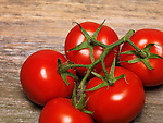 Tomatoes on the vine closeup on rustic wooden table background