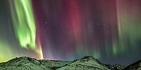 The colorful aurora arcs over the White Mountains National Recreation Area, interior, Alaska.
