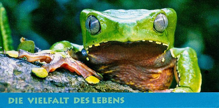 Exhibition leaflet, Frankfurt Zoological Society