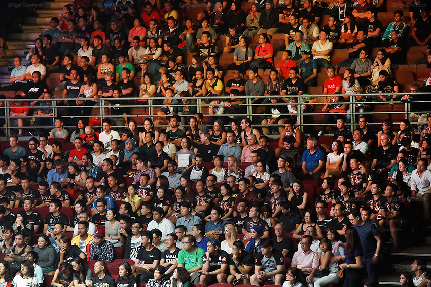 Spectators watch the MMA cage fighting<br />