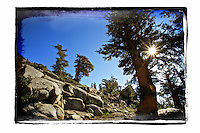 Rocky path in high sierras