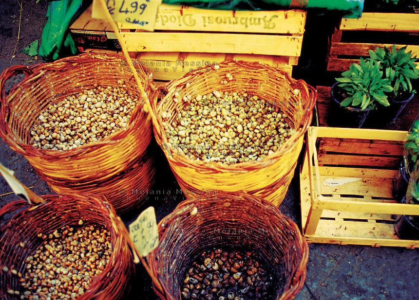Historic Ballaro' market in Palermo: snails.<br /> Mercato Ballaro' di Palermo, lumache.