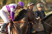 ARCADIA, CA  MARCH 11: #2 Gangster, ridden by Mario Gutierrez, in the post parade of the Santa Anita Handicap (Grade l) on March 11, 2017 at Santa Anita Park in Arcadia, CA (Photo by Casey Phillips/Eclipse Sportswire/Getty Images)