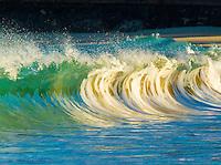 At sunrise, palm trees reflect off of a curling wave, Kauna'oa Bay and Beach (a.k.a. Mauna Kea Beach), Big Island.