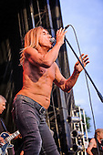 IGGY AND THE STOOGES (2013)