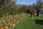 Two women enjoy the colorful flowers of spring in Regent's Park, London, England
