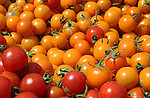 Red and orange cherry tomatoes at market