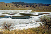 Spotted Lake near Osoyoos, South Okanagan Valley, BC, British Columbia,  Canada - Historical First Nations Sacred Mineral Waters